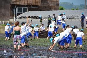 riceplanting2.jpg